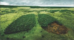 Google Earth y el Fondo de Defensa Ambiental generan mapas de contaminantes