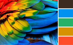 Paletas De Colores Para Tu Página Web 6